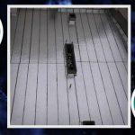 Order polymer isogum for roofing
